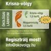 plakat_kiskep_100x100